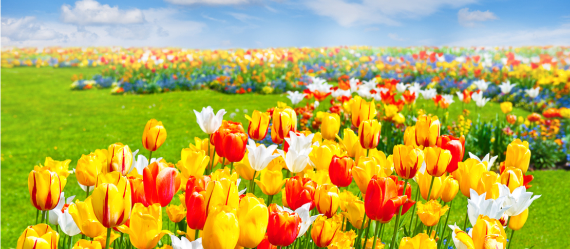 La palette della Primavera per l'armocromia